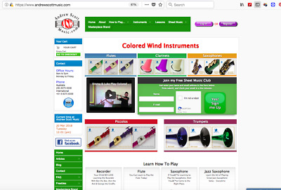 Musical Instruments Ebay Store, Website & Gumtree Listings