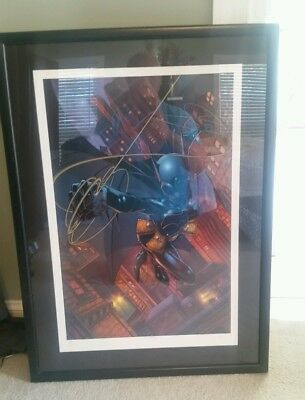 Batgirl Lithograph Warner Bros Studio Store # 42 Limited To 250 Framed Beautiful