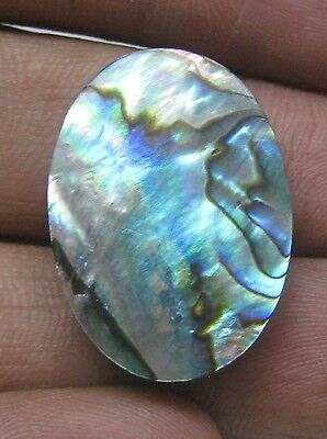 23 Cts Natural Abalone Shell Cabochon Oval Shape Loose Gemstone B 4075
