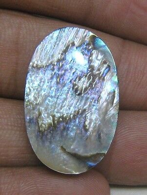 28.25 Cts Natural Abalone Shell Cabochon Oval Shape Loose Gemstone B 4062