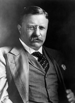 THEODORE ROOSEVELT JOB QUOTE GLOSSY POSTER PICTURE PHOTO teddy president us 2019