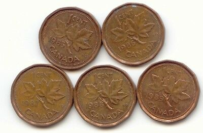 Canada 1985 1986 1987 1988 1989 One Cent Canadian Pennies Penny 1c EXACT SET ~