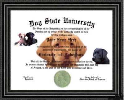 Labrador Lover's Doctorate Diploma / Degree Custom made and Designed for you