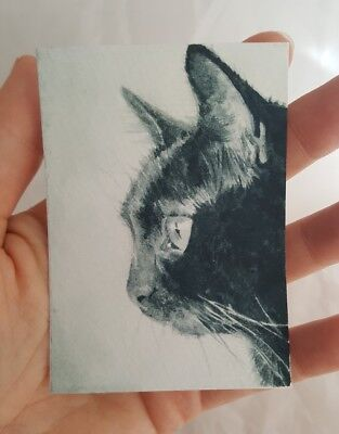 ACEO Original Black Cat Kitten Portrait Watercolor Painting Art M Gordon