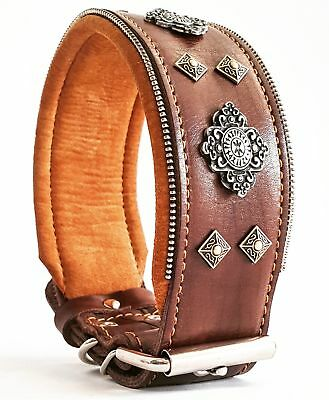 Bestia Aztec big dog leather collar with rivet decoration. padded. Hand made