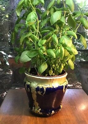 """Antique French Cache Pot Beautifully Marked """"PARIS"""""""