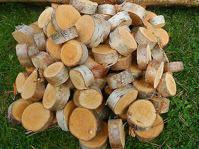 "65 Silver Birch Bark Wood Log Slices. Decorative Display Logs 5"" diam.x 1"" thick"