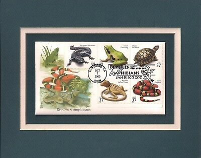 Reptiles & Amphibians - Very Colorful & Frameable Postage Stamp Art - 0661