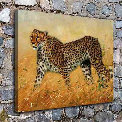 "12""x16""A6455-wild Animals Cheetah Home Decor HD Canvas Print Wall Art Picture"