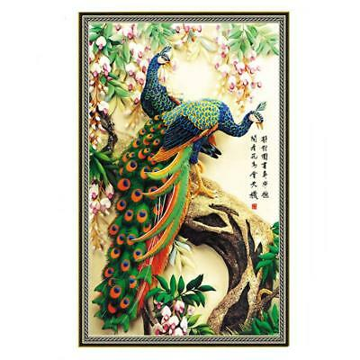 5D Diamond Embroidery Painting DIY Peacock Cross Stitch Craft Home Office Decor