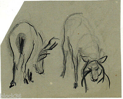 COWS page with drawing from the album of Russian artist A.M.Gromov