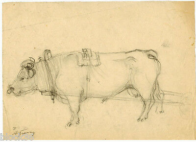 OX signed drawing by Russian artist A.M.Gromov  (page from the album)
