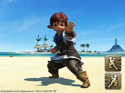 FINAL FANTASY XIV FFXIV FF 14 Item Emote Red Ranger Pose A and B - Code not GIL