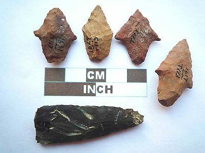 Native American Arrowheads x 5, Genuine Archaic Artifacts, 1000BC-8000BC (Y011)