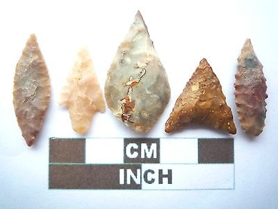 Neolithic Arrowheads x5, High Quality Selection of Styles - 4000BC - (X048)