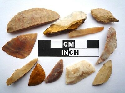 11 x Neolithic Tools  Scrapers, Saharan Flint Artifacts- 4000BC (0917)