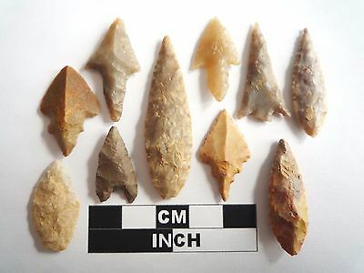 Neolithic Arrowheads x 10, High Quality Selection of Styles - 4000BC - (1070)