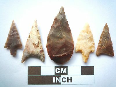 Neolithic Arrowheads x 5, Higher Quality, Genuine Artifacts from 4000BC  (V039)