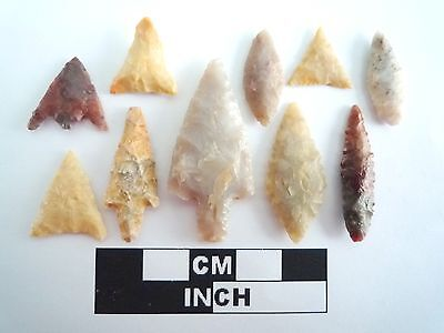 Neolithic Arrowheads x 10, High Quality Selection of Styles - 4000BC - (0389)