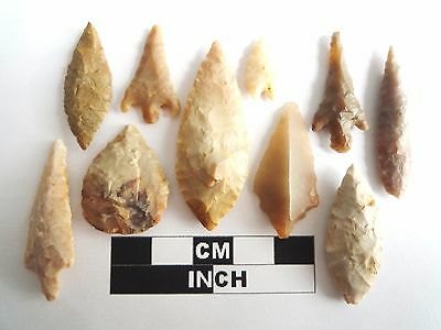 Neolithic Arrowheads x 10, High Quality Selection of Styles - 4000BC - (1076)