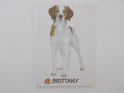 Small Rectangular Dog Breed Fridge Magnet Brittany Dog Breed Specific,Pet