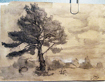 TREE drawing by Russian artist A.M.Gromov