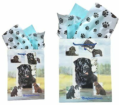Newfoundland Gift Bags Set of Two with Tissue Paper Ruth Maystead Newfoundlands