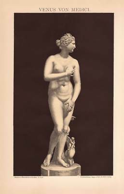Statue Venus Medici Florence Lithograph 1892 old historical german antique print