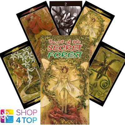 Tarot Of The Secret Forest Deck Cards Mattioli Esoteric Telling Lo Scarbeo New