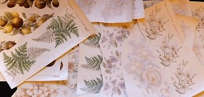 Ceramic Decals 75 Assorted Differant Sizes And Coulers Right Price