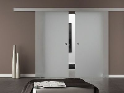 European 2 Leaf Elegant Double Sliding Glass Barn Doors- Opaque + Frosted