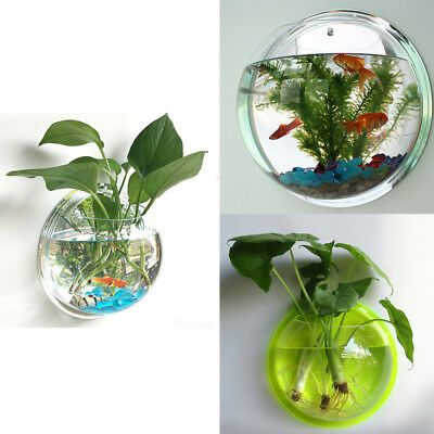 Home Mounted Hanging Bubble Bowl Plant Fish Tank Aquarium Acrylic-Pot Wall Decor