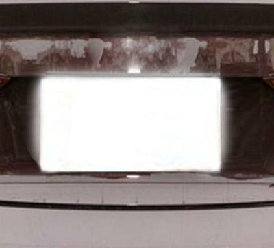 LICENSE PLATE COVER PhotoDefense film reflect Red-Light flash cameras  protector