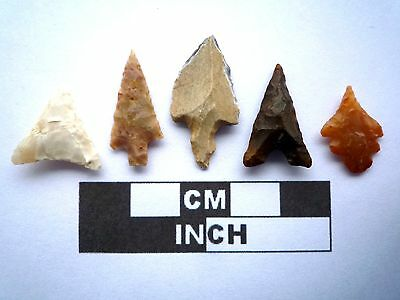 5 x High Quality Neolithic Arrowheads - 4000BC - (K005)