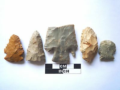 Native American Arrowheads x 5, Genuine Archaic Artifacts, 1000BC-8000BC (965)