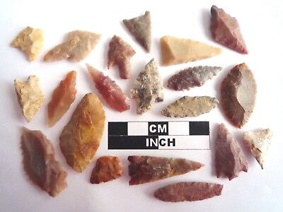 20 x Neolithic Arrowheads - Genuine Saharan Flint Artifacts - 4000BC (2111)