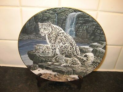 Wild Cats Plate  -  Snow Leopards    -  Wedgwood