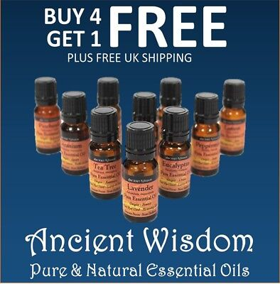 Essential Oils 10ml   Natural and Pure Aromatherapy Oil Selection