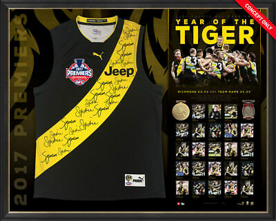 2017 Premiers Richmond Signed Official AFL Team Jumper Framed RRP - $1995 MARTIN