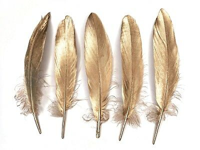 """Large Gold Goose Feathers 6-8"""" weddings, crafts, millinery, dream catchers"""
