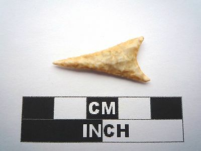 Neolithic Arrowhead 28mm, High Quality Saharan Flint Artifact - 4000BC  (1005)