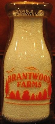 RHPP Brantwood Farm Milk Bottle Elkton Md  Newark Dairies Newark De Unique 1946