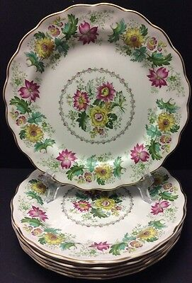 Beautiful Booths 6 Dinner Plates Victoria Pattern England Multi Colour Floral