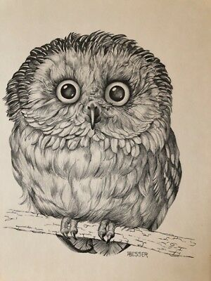 vintage OWL lithograph Print Besser 1971 Scafa-Tornabene Art Publishing Co.