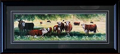 Large Framed Hereford Cattle Cows Summer Pastures Art Print Landscape Picture