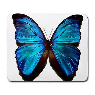 Butterfly blue Large Mousepad Mouse Pad Great Gift Idea