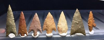 7 first grade neolithic arrowhead !!! museum lot !! 1.82 inches