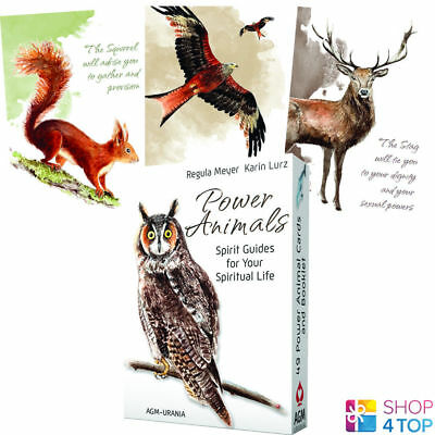 Power Animals Cards Deck Spirit Guides For Your Spiritual Life Esoteric Agm New