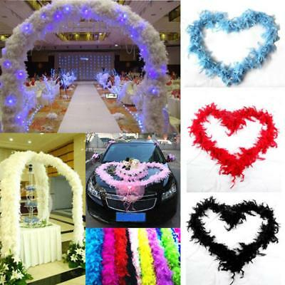 Best Wedding Supplies 2m Costume Dressup Party Decor Boa Fluffy Flower Feather