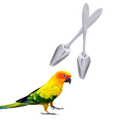 1PC Metal Stainless Steel Spoon Tool for Pet Parrot Cockatiel Feeding Milk Food